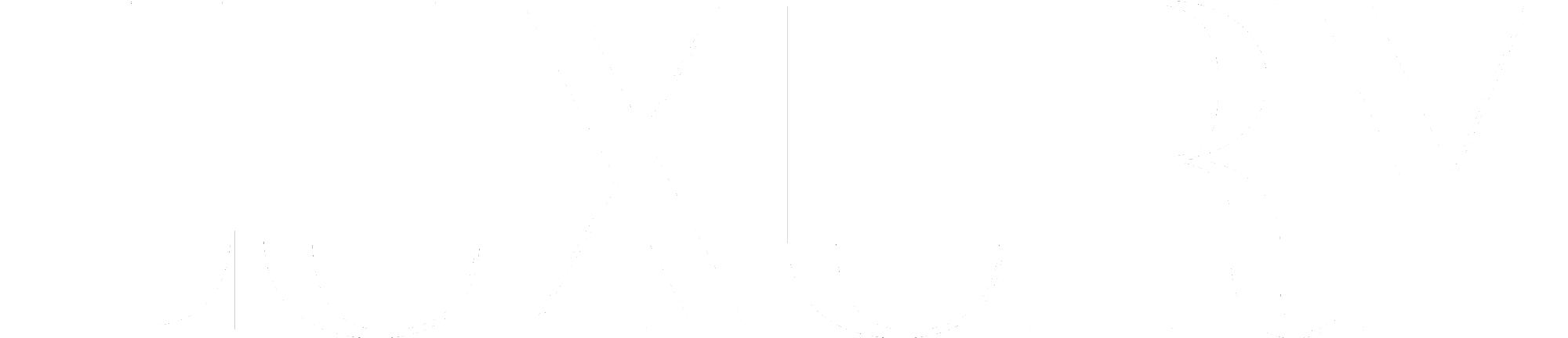LUXURY logo white